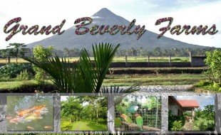 grand_beverly_farms